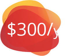 $300 per year